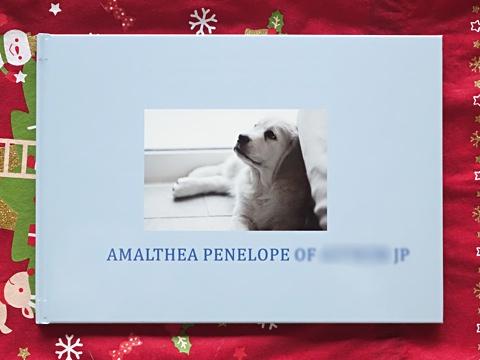 AlbumOfPenny-a.jpg