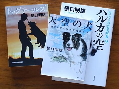 BooksOfAkioHiguchi1.jpg