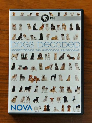 DogsDecoded.jpg