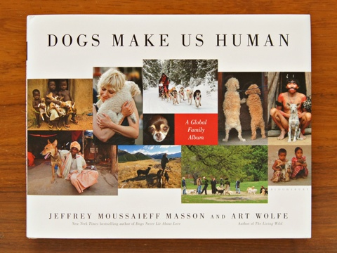 DogsMakeUsHuman.jpg